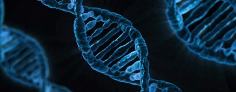 genes-cancer