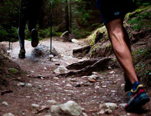 ¿Cuál es el mejor tipo de ejercicio físico?