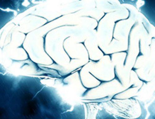 Desintoxicación cerebral: El descubrimiento de un nuevo sistema corporal.